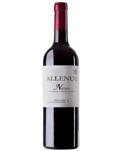Allende, Nature 2019