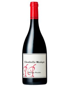 Philippe Pacalet Chambolle-Musigny 2018